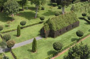 living-tree-church